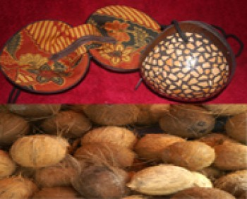 Coconut Craft (artesanias del coco)